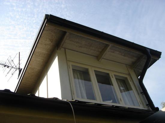 Halmstads Fönsterputs- Svartmögel