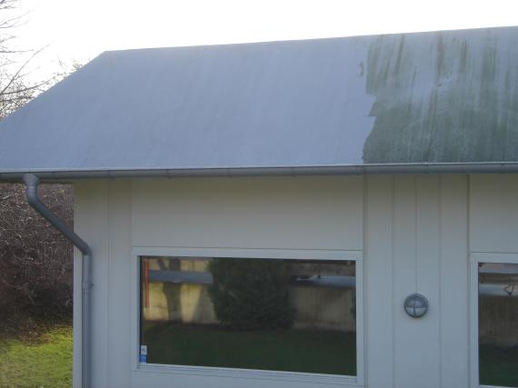 Halmstads Fönsterputs- Resultat efter tvätt av tak från biologisk tillväxt och missfärgningar